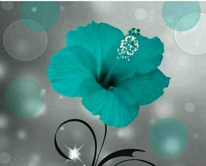 Decorative sea blue Flower