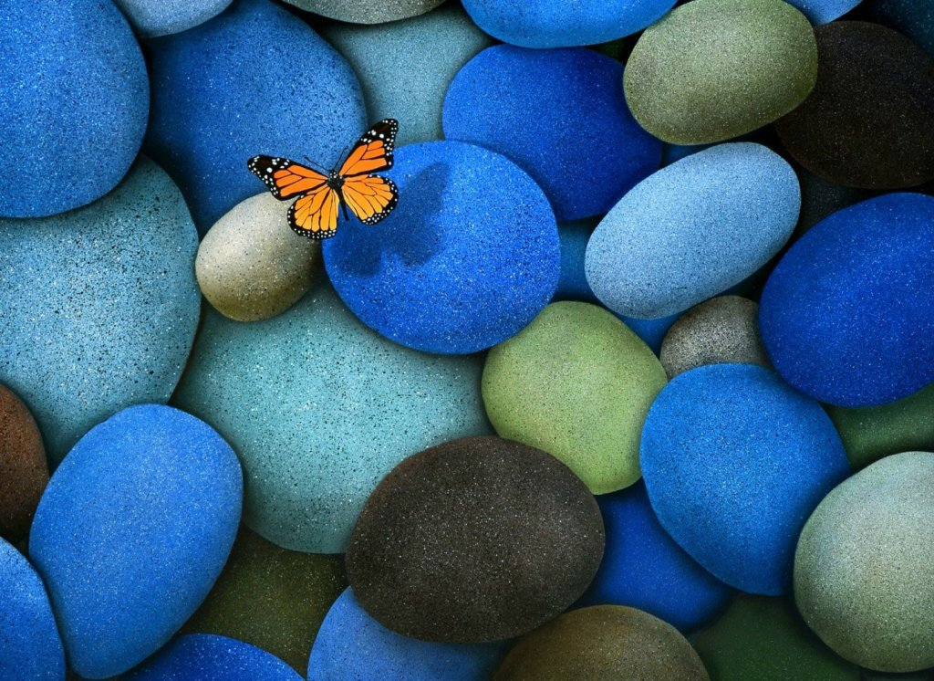 Colourful stones with butterfly