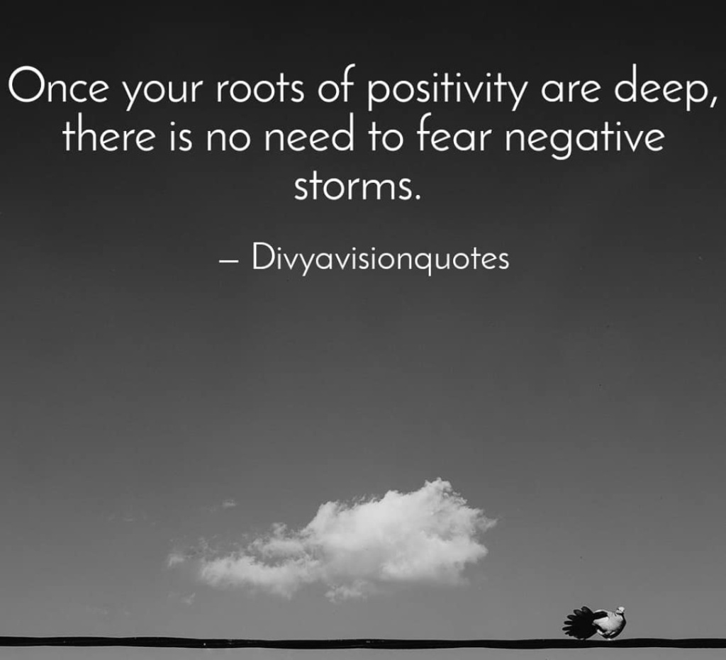 Once your roots of positivity are deep, there is no need to fear negative storms. #Divyavisionquotes