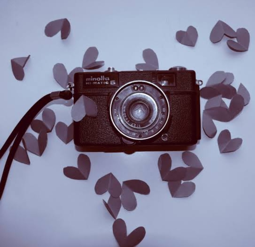 Camera with some leaves