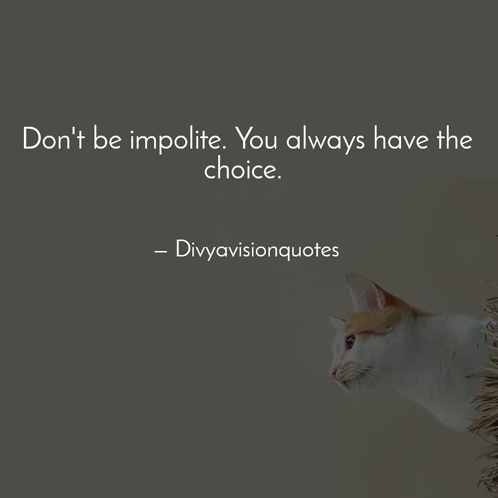 Don't be impolite. You always have the choice.  #divyavisionquotes
